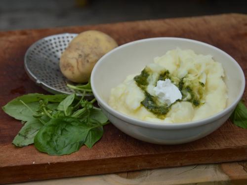 Basilic purée, basilic, pommes de terre, purée de pommes de terre