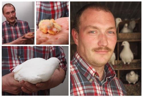 feuilleté de pigeonneau aux légumes, Cyril Jourdain, Pigeonord, Femina, la Cocotte,