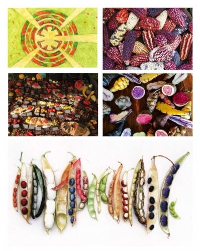 Eldorado au lycée horticole de Lomme et pop-corn arriba, arriba, arriba, Eldorado, Lille 3000, Yann Lafolie, médiathèque de Lomme, Lomme, pop-corn, la Cocotte