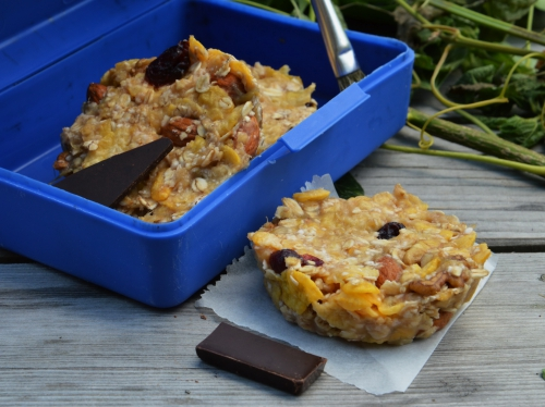 Biscuits granola à la rhubarbe, granola, rhubarbe, flocons d'avoine, corn-flakes