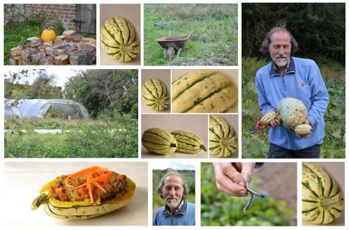 Courge Delicata farcie à la Farkhana, courge delicata, courge sweet potato, François Wiart, Rimboval, le chêne dans le courtil, Femina, la Voix du Nord, la Cocotte