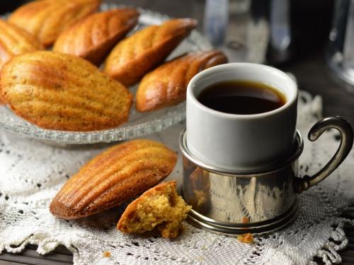 Madeleines façon café turc, madeleines, cardamome, chicorée