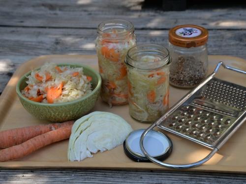 chou fermenté à la carotte, la cocotte, la voix du nord