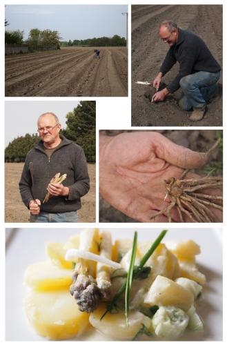 asperges, Philippe Lingrand, Leforest, salade printanière d'asperges