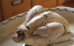 poulet, estragon, vapeur