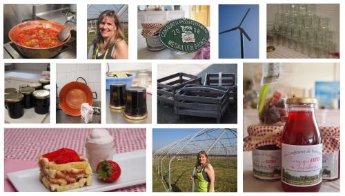 roulé-carré à la confiture fraises-rhubarbe,nathalie saingier,les confitures de verlinghem,femina,la voix du nord,la cocotte