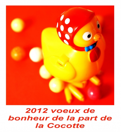 voeux 2012,la cocotte,bonne année