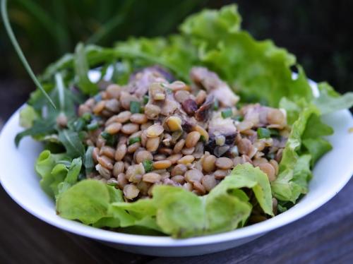 Lentilles en salade au bœuf, lentilles, pot-au-feu, boeuf, salade de lentilles