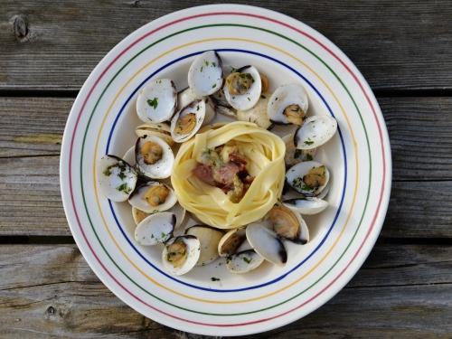 tagliatelles et clams en sauce blanche,la cocotte,la voix du nord