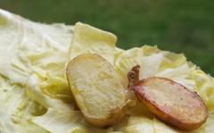 pommes et barbe en salade.jpg