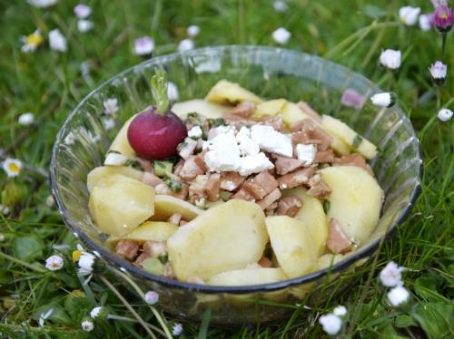 Salade mortadelle-patates, la Cocotte, la voix du nord, le Furet du Nord, Coquelles