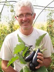 tomates-aubergines et supions à la provençale, Philippe Delfosse, le potager gourmande, Crespin, La Cocotte, Femina, La voix du Nord, aubergines, supions, calmars