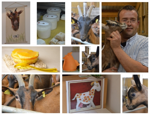 cheesecake tout chèvre à l'orange,faisselle de chèvre,fromage frais de chèvre,la chèvrerie de l'écaillon,jean-philippe bourgois,femina,la voix du nord,la cocotte